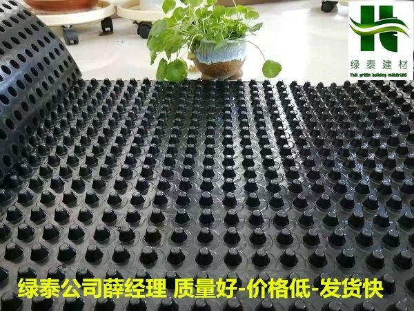 20厚滤水板