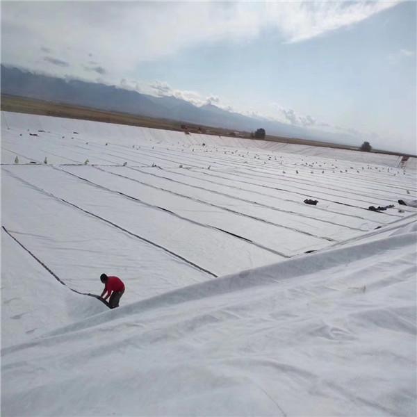 人工湖复合土工布施工